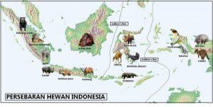 peta hewan langka Indonesia