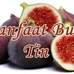 manfaat buah tin untuk kesehatan kecantikan wajah
