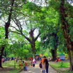 taman balekambang wisata hits di solo