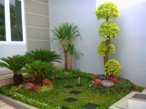 desain taman rumah minimalis kering