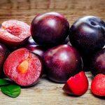 manfaat buah plum