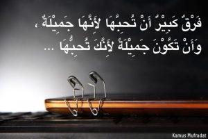 kata kata mutiara cinta bahasa arab